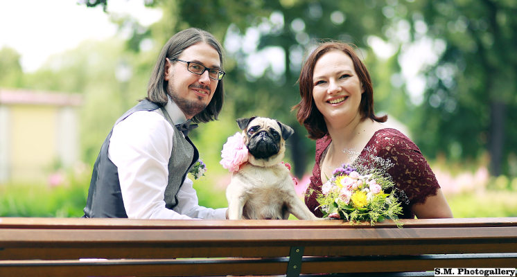 Family of guides three pug