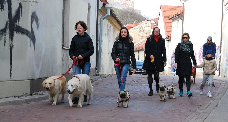 siauromis senamiescio gatvemis ekskursijos su sunimis