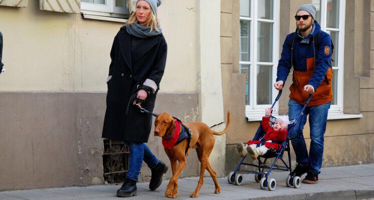Su sunimi ir vaiku ekskursija su sunimi