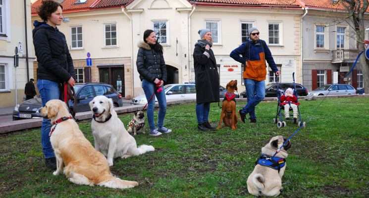 Sunys ir seimininkai klauso ekskursija su sunimi