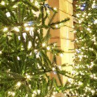 Naujiena – teminė ekskursija apie Kalėdas!