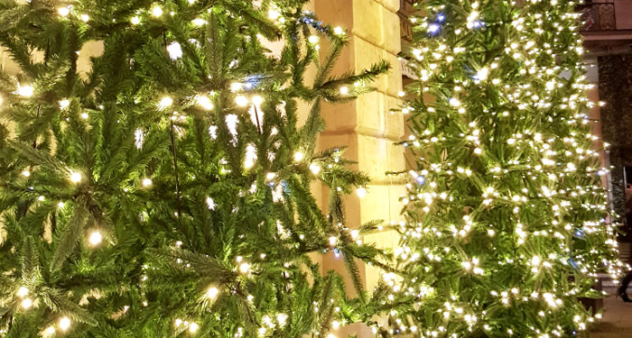 Šv. Kalėdų paslaptys ekskursija