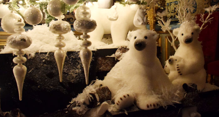Balti meškiukai po kalėdine eglute